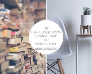 De l'accumulation compulsive au minimalisme