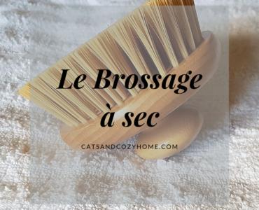 Brossage-a-sec