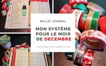 Bujo-decembre-2018